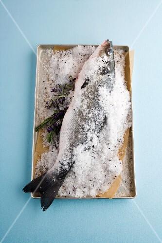 Branzini in a lavender salt crust
