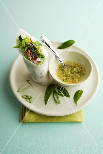 Spring rolls with marinated beef and mint served with a peanut and cucumber dip