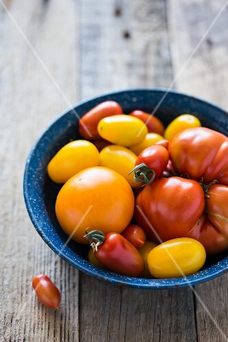 Maine Grown Tomatoes in a Bowl; Black Cherry, Sun Golds, Yellow Pear and Cherry; From Above