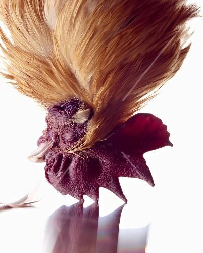 A hanging cockerel