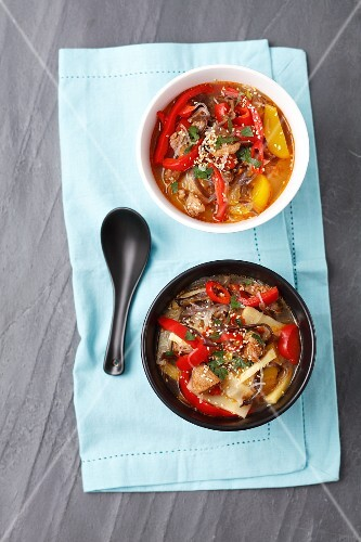 Spicy-sour soup with duck, bamboo shots, peppers, Chinese mushrooms and noodles