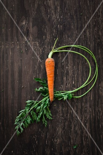 A carrot on a wooden surface