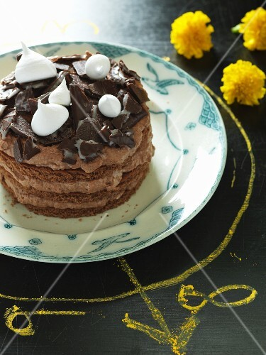 A mint chocolate cake decorated with meringue