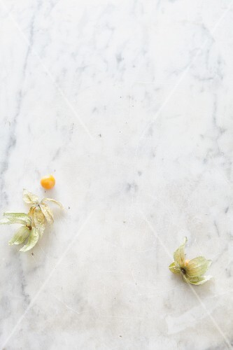 Two physalis' on a marble surface (seen from above)