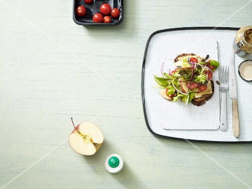 A vegetarian open sandwich with cheese, lettuce and apple (low carb)