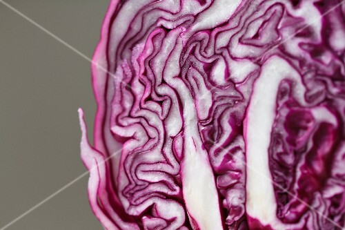 Sliced red cabbage (detail)