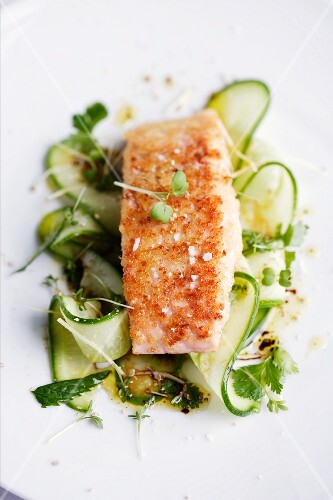 Fried salmon with fresh ginger on a cucumber salad