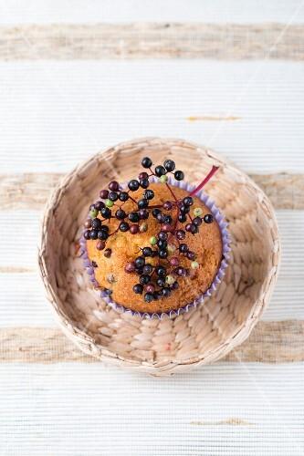 An elderberry muffin