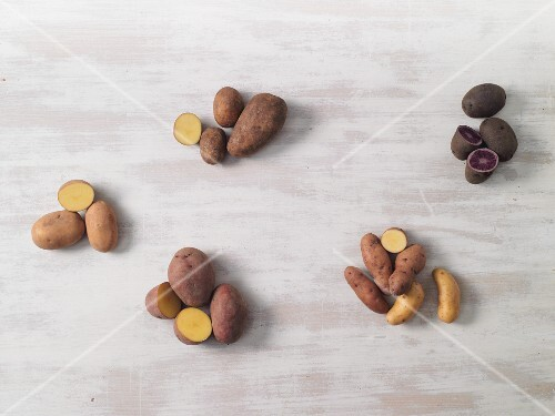 Six types of potatoes – Linda, Laura, Agria, Blue Congo, Bamberg and La Ratte