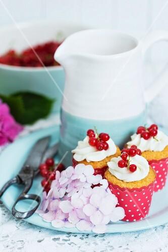 Redcurrant cupcakes