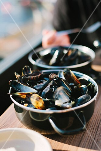 Mussels in white wine sauce in a saucepan