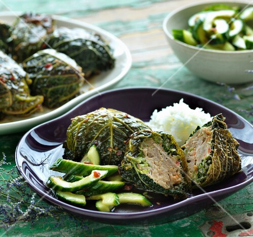 Savoy cabbage dolmas with cucumber salad