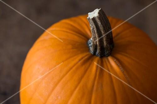 A pumpkin (close-up)
