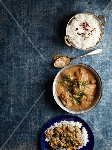 Dum ka Murgh (India chicken curry) with rice