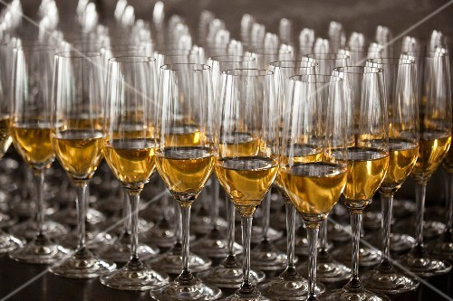 Rows of white wine glasses on a table
