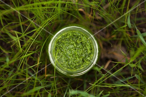 Homemade green smoothie in a jar in a field (seen from above)