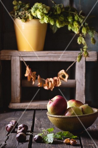 An autumnal arrangement of apples, chestnuts, nuts, apple rings and hops