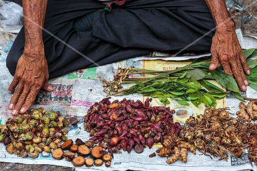 Medicinal plants being sold at a street market in Nong Khai, Thailand