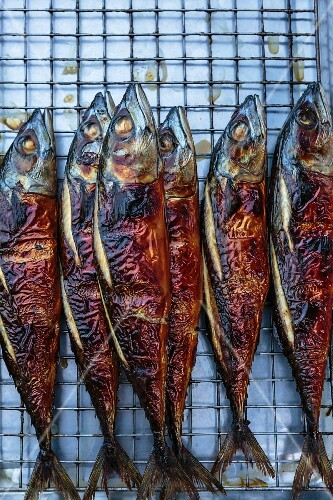 Grilled mackerel at a market in Bangkok, Thailand