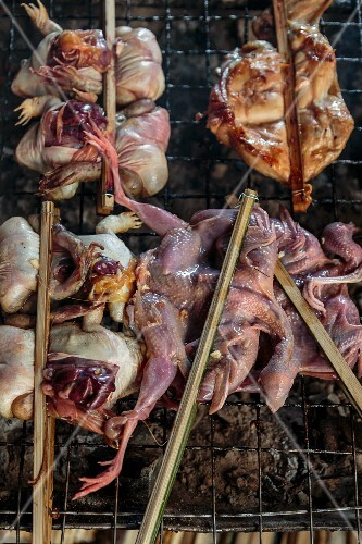 Frogs and chicken on a barbecue in Bangkok, Thailand