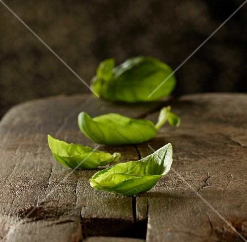Fresh basil leaves on a wooden board