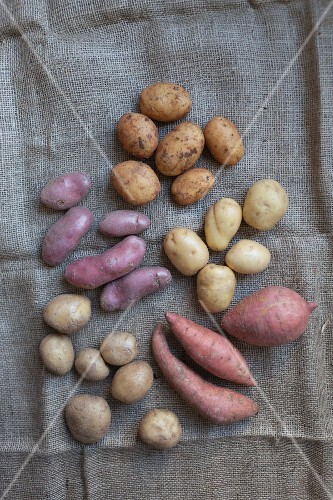 Various types of potatoes on a jute sack
