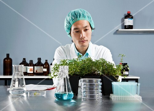 A lab technician observing plants in a laboratory