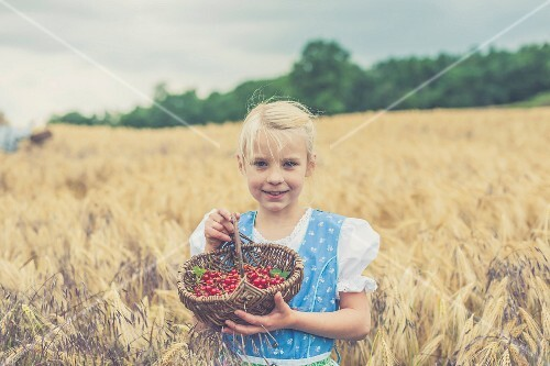A little girl wearing a dirndl standing in the middle of a cornfield holding a basket of redcurrants