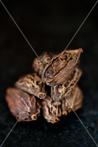 Black cardamom pods (close-up)