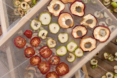 Tried apple rings, tomatoes and pear slices on a mesh rack