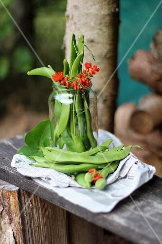 Beans in a jar on a wooden board in a garden