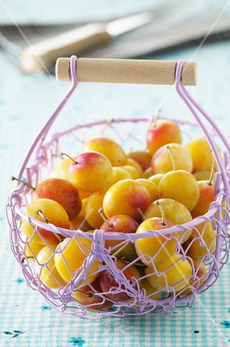 Yellow plums in a lilac wire basket