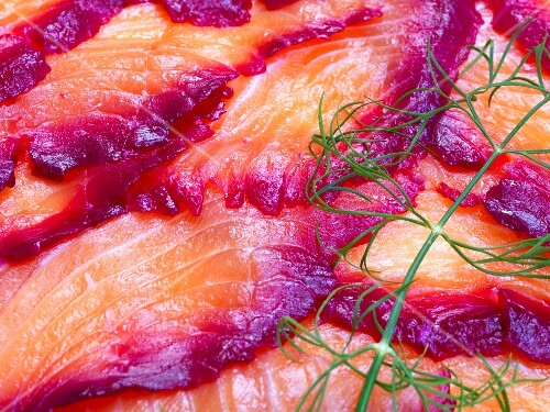 Sliced Norwegian graved lax with sprigs of dill