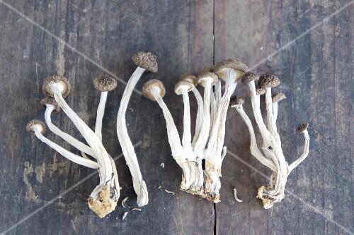 Dried enoki mushrooms (Japan)