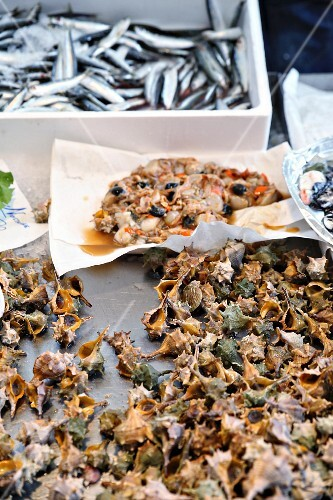 Spiny dye murex, scallops and sardines at a fish market in Venice