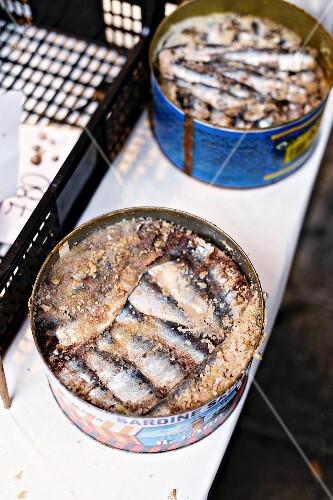 Salted sardines in metal tins at a fish market