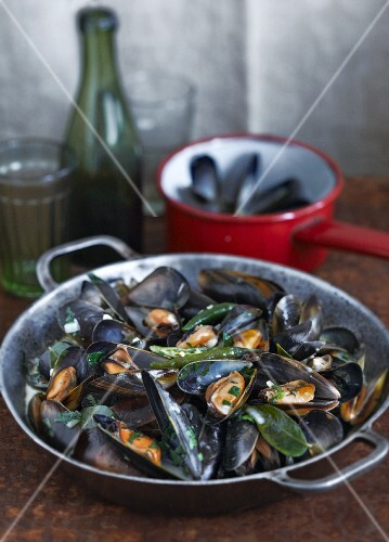 Mussels with herbs and chillis (India)