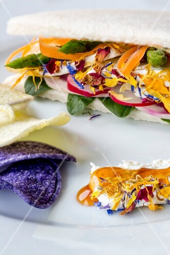 Goat's cheese, vegetable and edible flower sandwich served with colourful potato crisps
