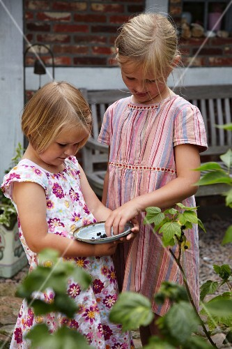 Two girls with dish of blackcurrants in front of rustic wooden bench