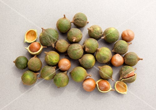 Unshelled macadamia nuts seen from above