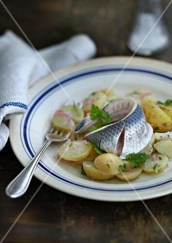 Pickled herring on potato salad