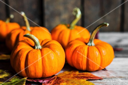 Orange pumpkins and autumn leaves on rustic wooden surface
