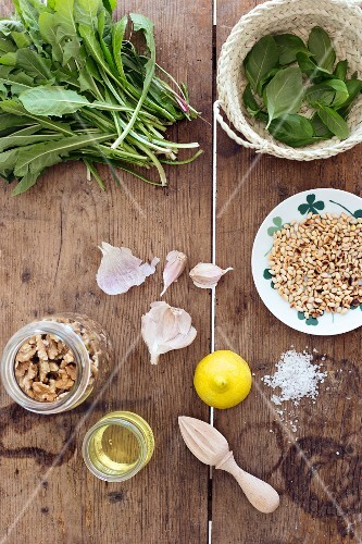 Dandelion leaves, basil leaves, walnuts, garlic, roasted pine nuts and lemon on a rustic wooden surface