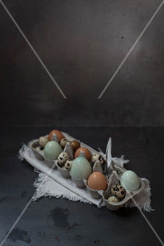 Various organic eggs in an egg box