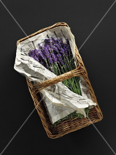 Flowering lavender on newspaper in a basket