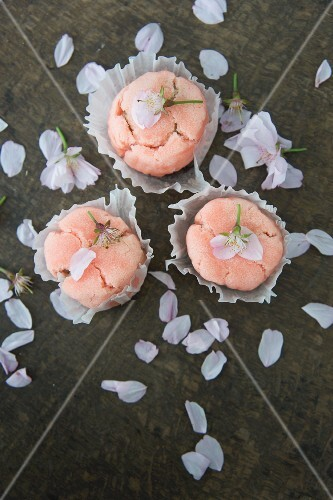 Japanese sweets with scattered cherry blossom