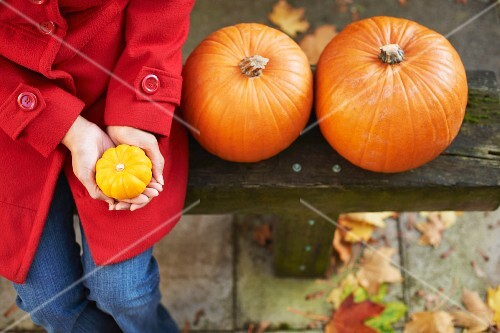 A woman sitting on a bench next to two pumpkins with an ornamental squash in her hands