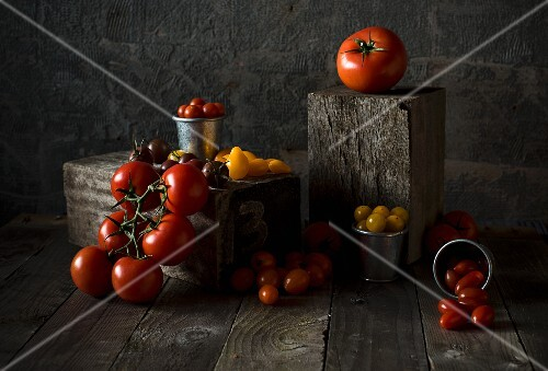 An arrangement of tomatoes in various sizes and colours