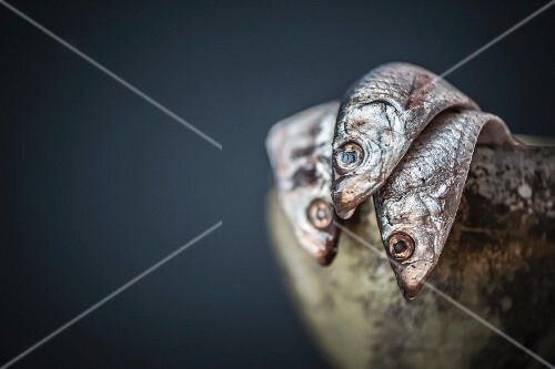 Anchovies in a metal goblet (close-up)