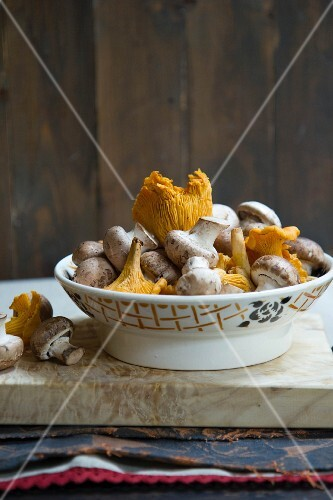 Fresh mushrooms and chanterelle mushrooms in a porcelain bowl